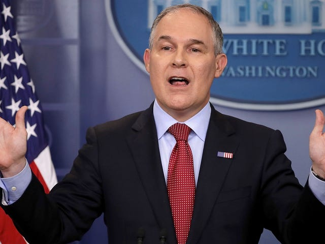 President Trump's EPA Says Burning Wood is Carbon Neutral, Like Wind and Solar Energy
