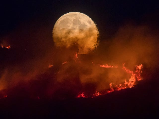 A Massive Wildfire Is Burning Near Manchester in the United Kingdom
