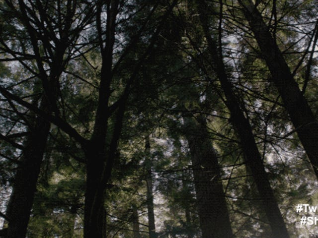 Gilmore Trail - Twin Peaks (Portada de 'Falling' y 'Laura Palmer's Theme')