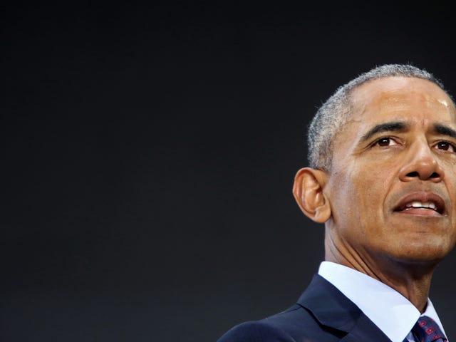 Белые мужчины, просящие Барака Обаму возглавить сопротивление, должны заняться самими делами