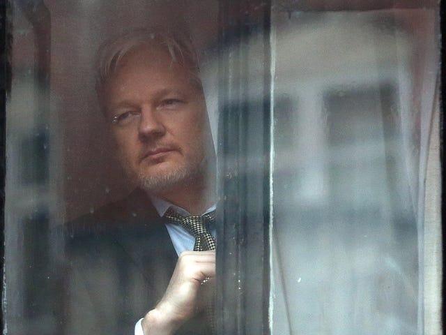 Julian Assange es acusado de filtrar al presidente de las fotos familiares privadas de Ecuador