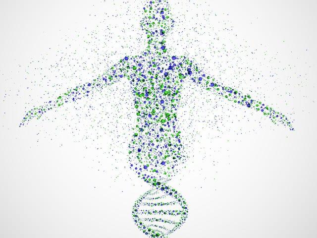 Chúng tôi vẫn không biết phần lớn DNA của chúng tôi làm gì