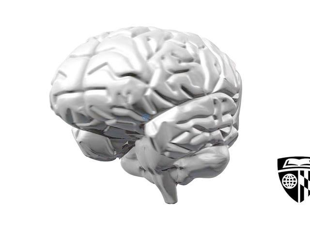 Тренировка мозга может действительно работать, если это правильный метод
