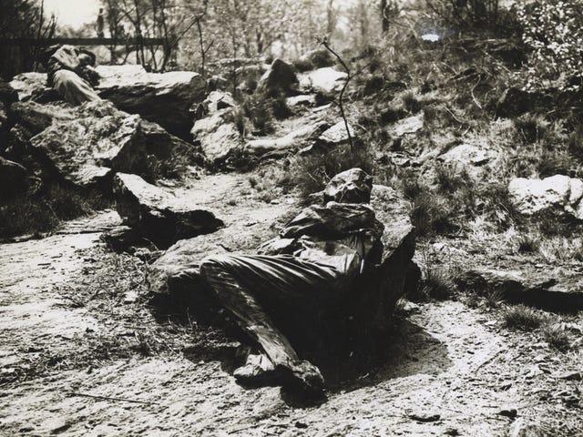 Por qué había mujeres fingiendo ser rocas y árboles en los parques de Nueva York durante la WW1<em></em>