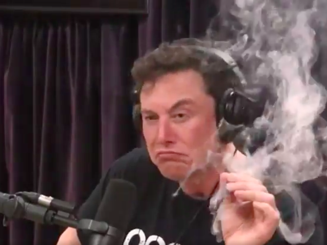 Elon Musk czołgi cena akcji Tesli, wkurza Grimesa najnowszym krachem na Twitterze