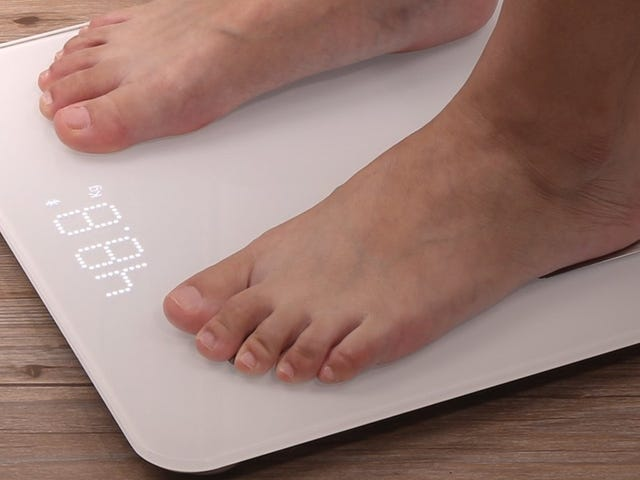 This Bluetooth Smart Scale Is Just $23