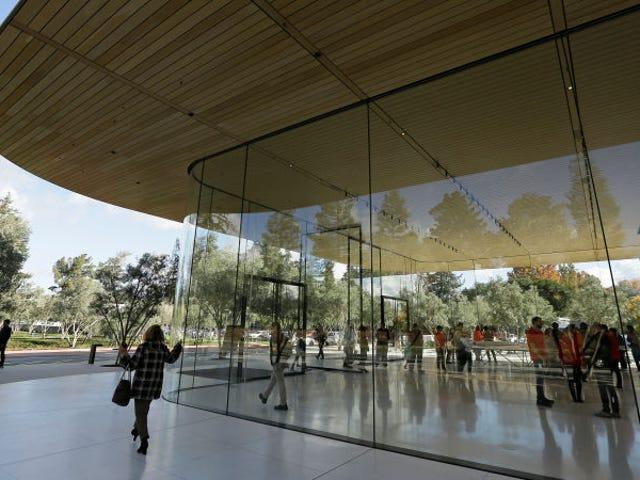 Lees meer over Apple se chocaran contra las paredes de vidrio de Apple Park