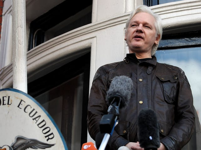 Julian Assange Advokater for at argumentere Trumps nye Intel Chief Chief Søgt Shady Extradition Deal
