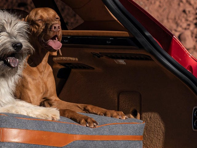 El Aston Martin DBX está listo para tu cachorro