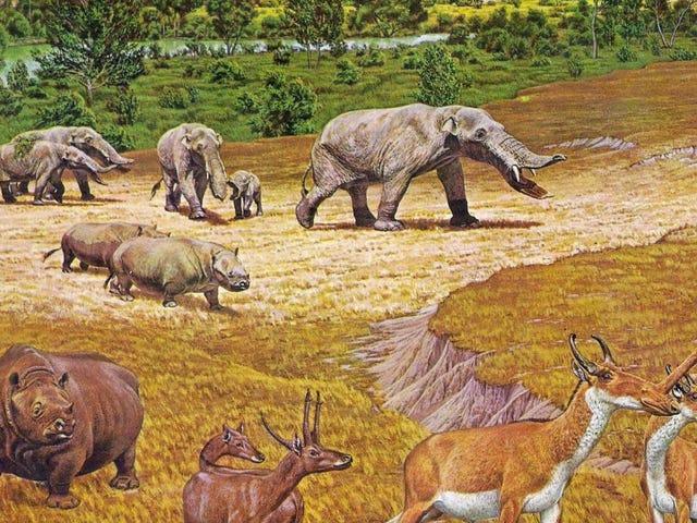 Treffen Sie die wilden Kreaturen, die das alte Texas durchstreiften