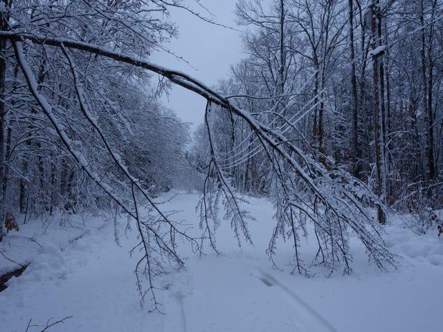 Snow Day #2 - It's Still November