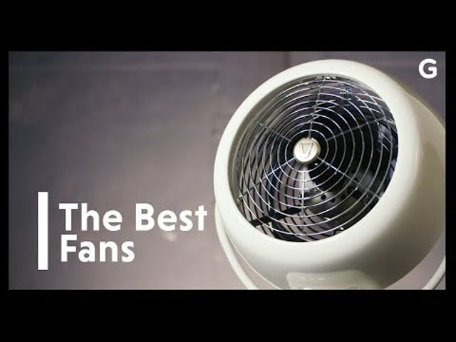 The Best Fan to Get You Through the Sweaty Summer