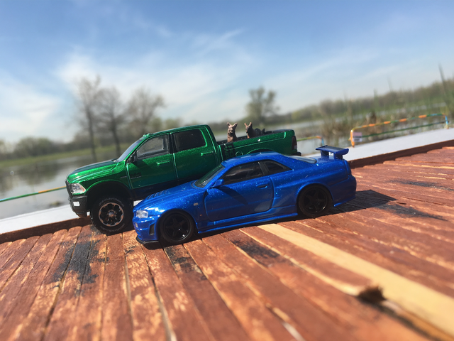 A Z Tuned R34 and Pinky & Shadow at The Lake
