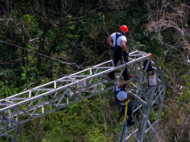 1 Fish, 2 Fish, No More Whitefish: Puerto Rico Cancels Controversial Energy Contract