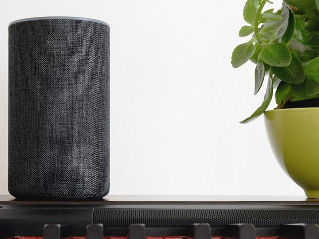 Alexa Can Now 'Get Back to You On That'