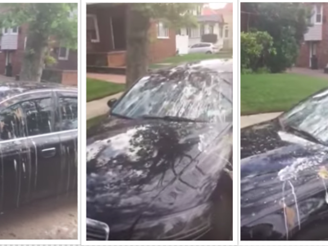 Man Discovers Audi Drenched In Bird Shit