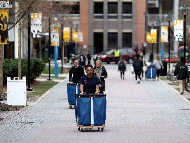 छात्र वैज्ञानिकों ने कोविद -19 से अधिक विश्वविद्यालयों के शट डाउन के रूप में अपनी भविष्य के बारे में चिंता की