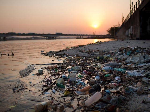 «Νομίζω ότι η κατάσταση του νερού στο Ρίο είναι κατευθυνόμενη» λέει ο Pro Surfer αναγκάστηκε να κολυμπήσει σε αυτό