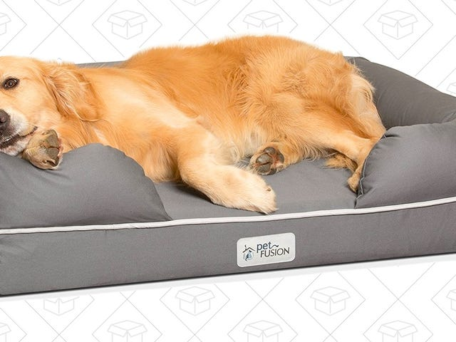 Buy Your Very Good Boy This Highly-Rated Memory Foam Dog Bed
