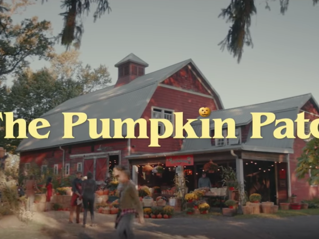 Saturday Night LiveEmbroiled in Pumpkin-Fucking Plagiarism Scandal