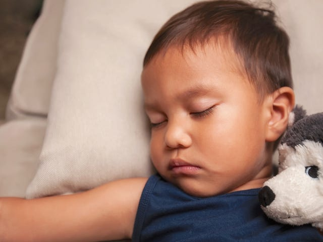Sleep Train Your Toddler Using This Method by Harvey Karp