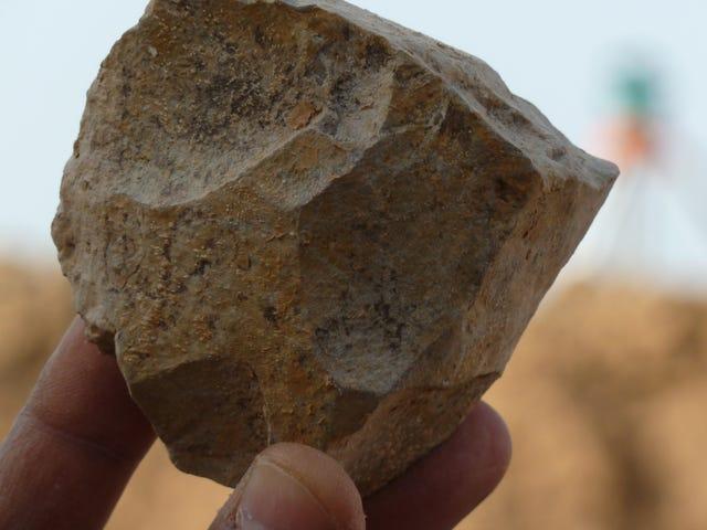 L'histoire de l'origine humaine a de nouveau changé grâce à une nouvelle découverte en Algérie <em></em><em></em>