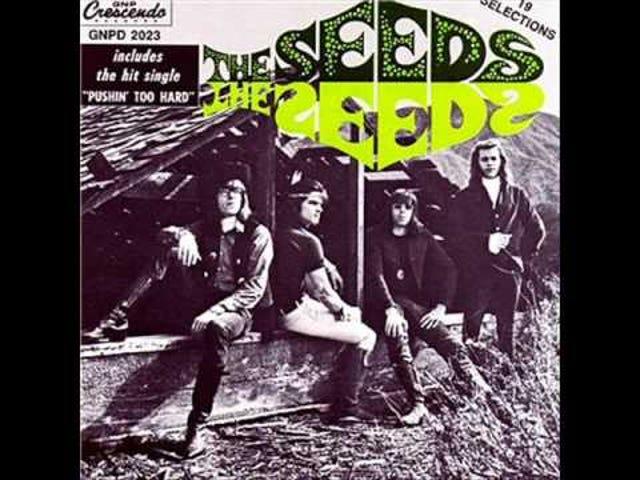 Pushin' Too Hard - The Seeds