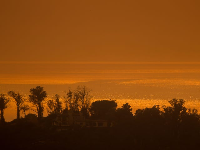 Wet Winters No Longer Protect California From Brutal Wildfire Seasons, Study Finds