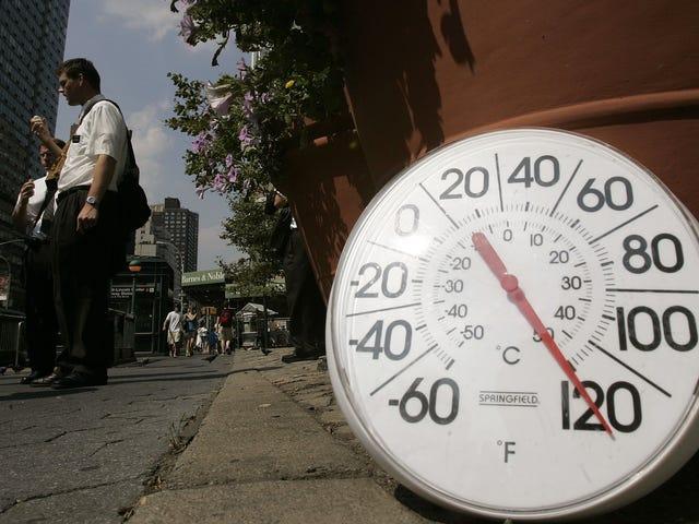 Bis zum Ende des Jahrhunderts könnte sich San Franciscos Klima wie LA anfühlen