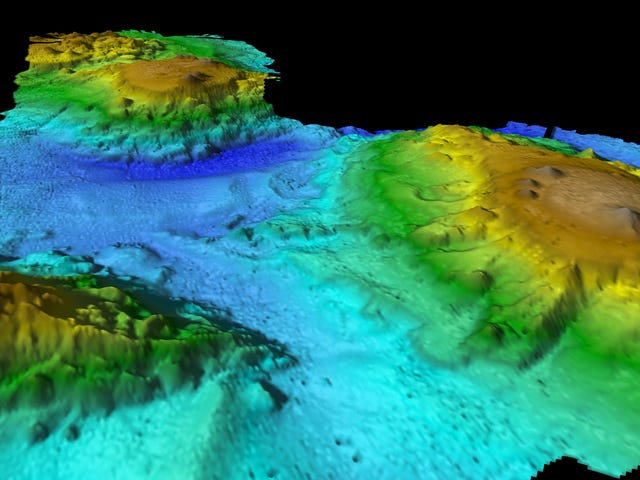 Newly Discovered Volcanic 'Lost World' Is a Haven for Marine Life