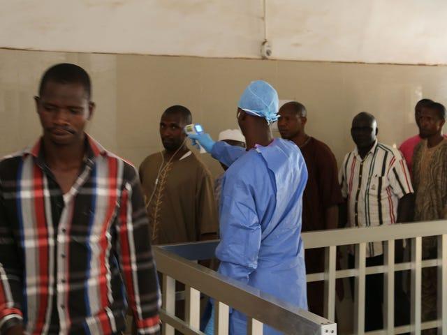 Deux nouveaux cas d'Ebola sont apparus en Guinée