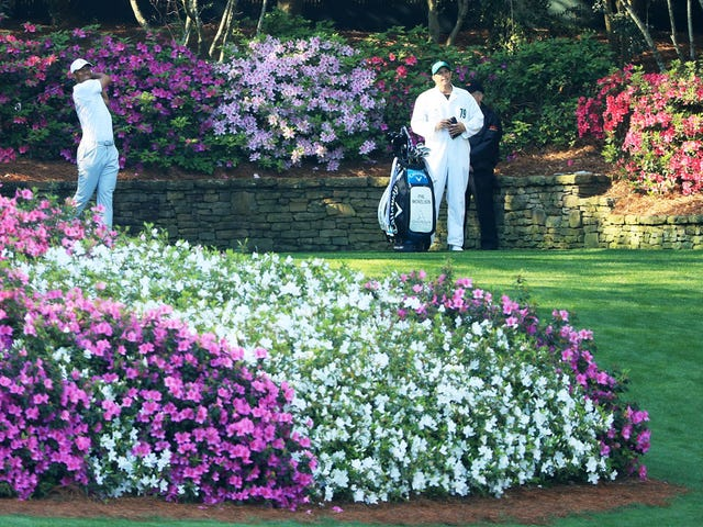 Report: Dumb Beer Ad Phrase Banned From The Masters