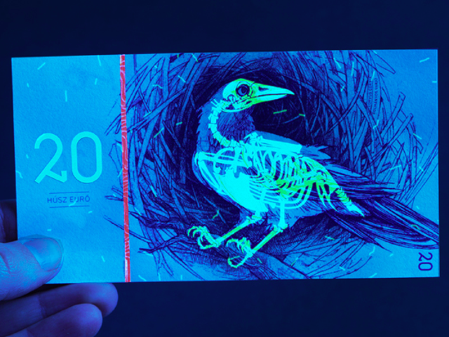 Gorgeous Banknotes Feature Flora, Fauna—And Skeletons Under UV Light