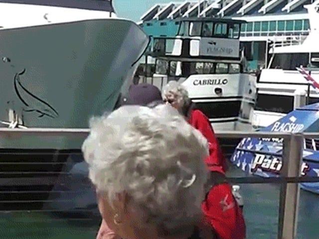 Katso veneen kaatuminen suoraan telakkaan