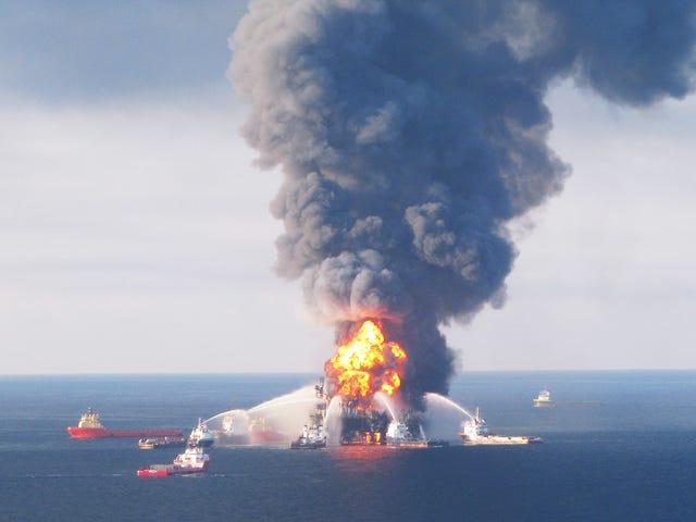 Nous sommes sur le point de perdre l'un de nos meilleurs outils pour étudier les retombées de la marée noire de BP