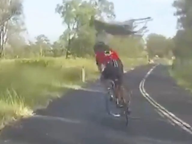 Kangaroo Destroys Cyclist