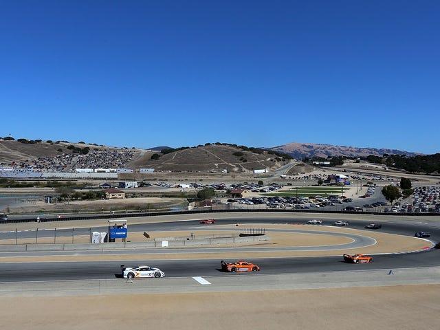 Corner Worker Killed in Track Day Crash at Laguna Seca
