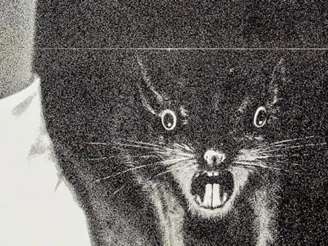 Fans of Rat-Themed Horror, Rejoice: Both <i>Ben</i> and the Original <i>Willard</i> Are Scurrying to Blu-Ray