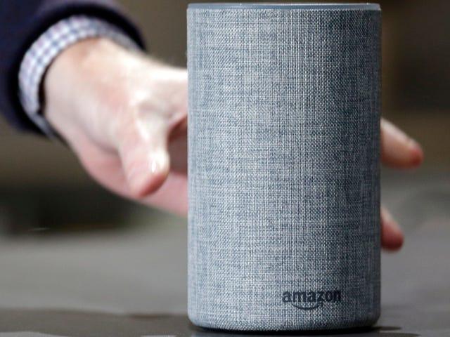 Alexa Voice Assistant d'Amazon d'Amazon enregistre illégalement des enfants sans consentement