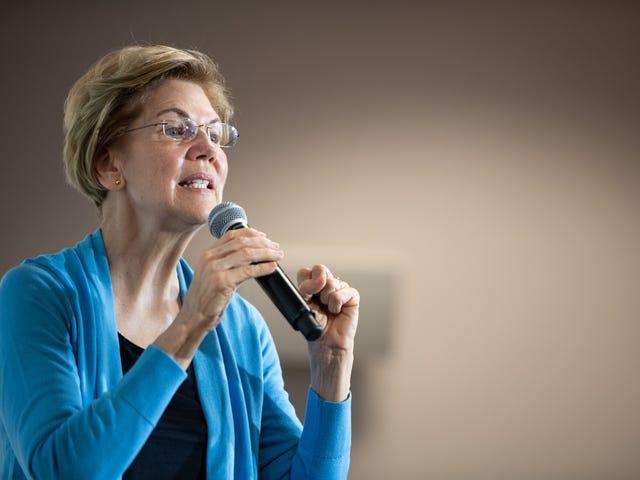 Elizabeth Warren har en plan för att göra röstningen enklare och säkrare i november - om du är i det slags