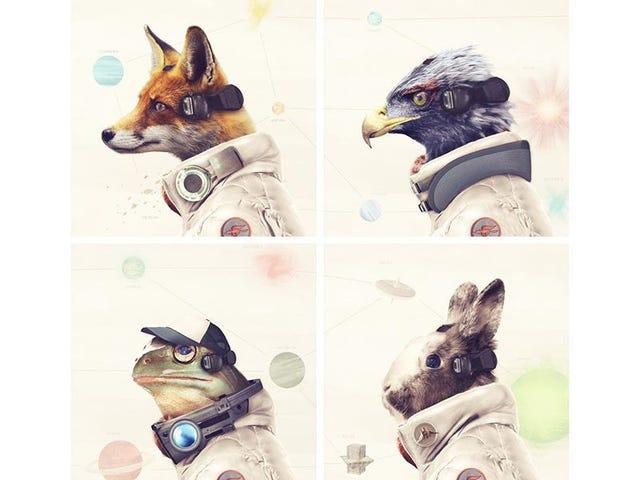 현실적인 <i>Star Fox</i> 캐스트