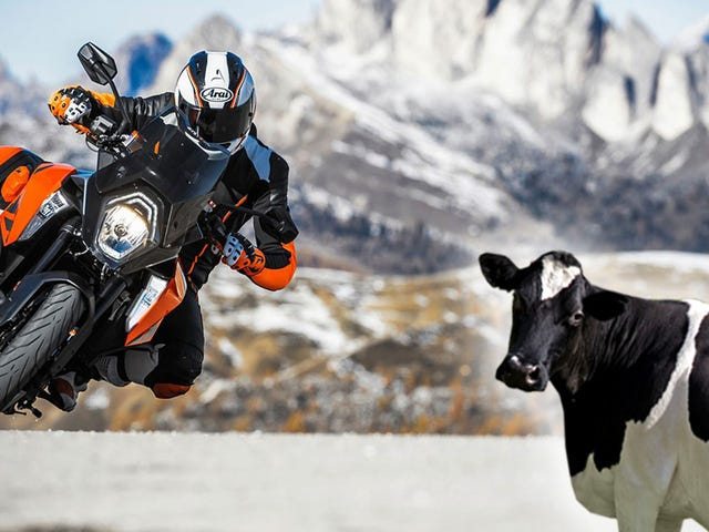 How A Trade Beef With Europe Could Make Your Next Motorcycle A Lot More Expensive