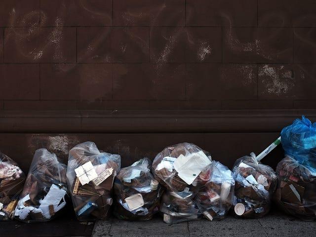 Trabajar en un camión de basura de la ciudad de Nueva York suena completamente de pesadilla