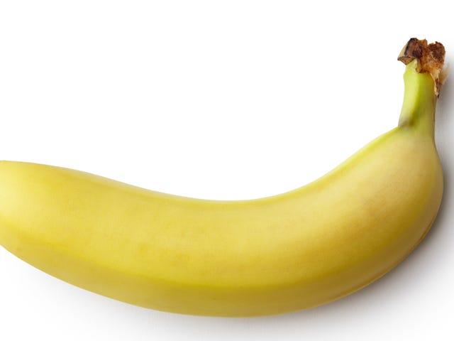 Würdest du bitte einfach mal einen Penis bei DoNotDrawAPenis.com ziehen?