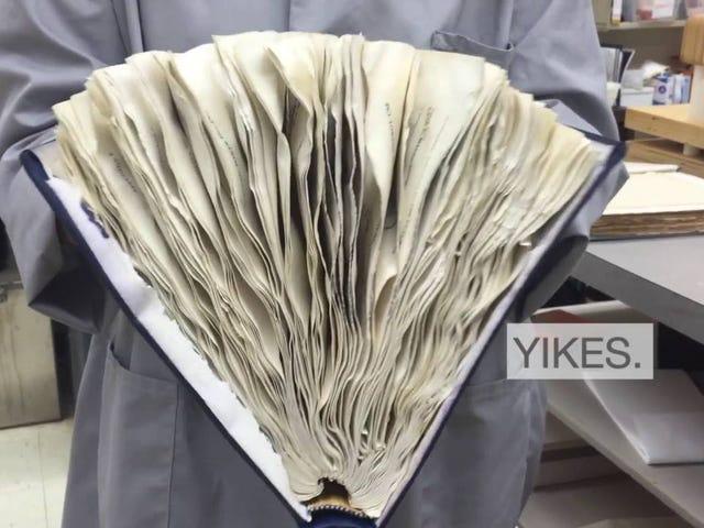 Tome algum conforto existencial neste vídeo de uma técnica de resgate de livros molhados