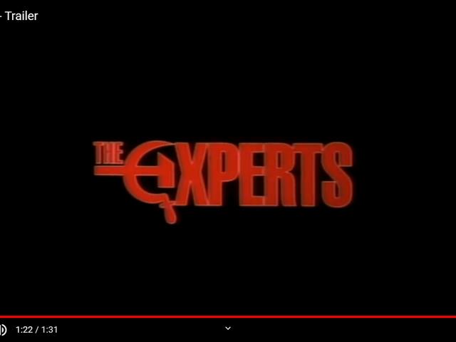 专家(1989)