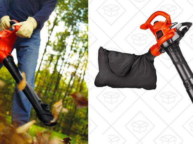 Blow, Mulch, and Vacuum Leaves With This $67 Black & Decker Machine