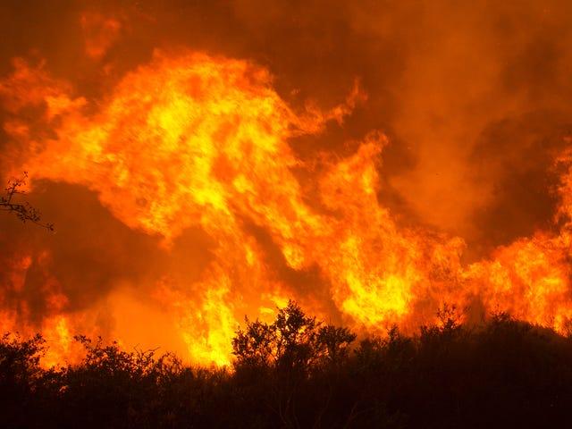 Tahrip Edici Bir Sezon Sonunda Orman Yangınları Kuzey California'ya Yol Açıyor [Updating]