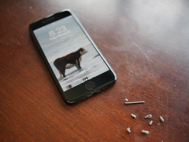 Κοιτάξτε πόσο αηδιαστικό είναι το θύρα φωτισμού του iPhone σας είναι πιθανόν