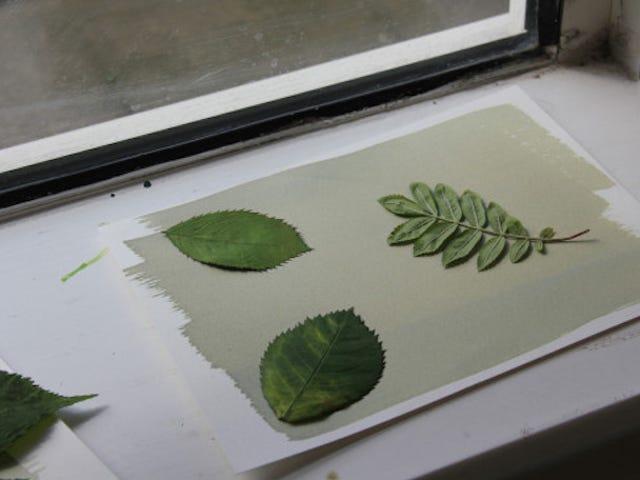 3 έργα τέχνης για παιδιά που χρησιμοποιούν τη δύναμη του ήλιου